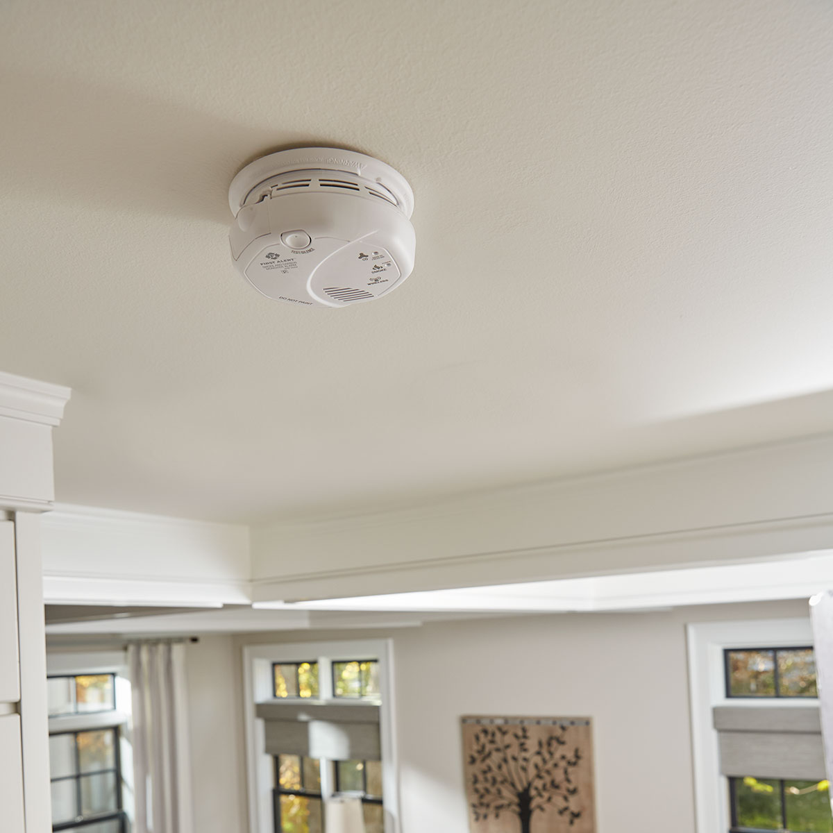 First Alert Wireless Interconnect Talking Battery Operated Smoke & Carbon Monoxide Alarm - SCO501CN-3ST (1039839)